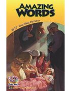 Dlc B3: Amazing Words Teaching Pictures Ages 8-10 (Discipleland Level 3, Ages 8-10, Qtrs Abcd Series)