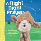 A Night Night Prayer (Night, Night Series) Board Book