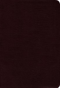 Amplified Cross-Reference Bible Burgundy