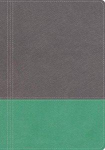 NKJV Modern Life Study Bible, the Leathersoft Dove Gray/Lagoon Green