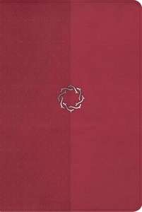 NKJV Essential Teen Study Bible Rose Leathertouch