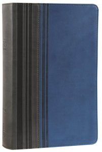 NIV Teen Study Bible Graphite Mediterranean Blue