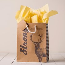 Gift Bag Medium: Strong (Incl Two Sheets Tissue Paper & Gift Tag)