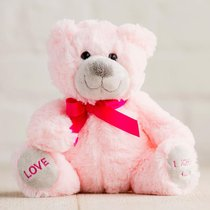 Hug For Your Heart Bear: Love 1 John 4:16, Pink/Dark Pink Ribbon