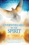 Overwhelmed By the Spirit eBook