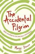 The Accidental Pilgrim eBook