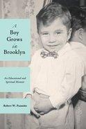 A Boy Grows in Brooklyn Paperback