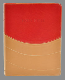 NIV Ministry Essentials Bible Brick Red/Sand
