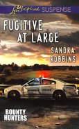 Fugitive At Large (Love Inspired Suspense Series) eBook