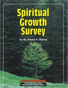 Team Ministry: Spiritual Growth Survey Paperback