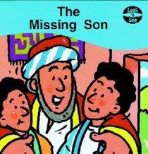 Missing Son (Look n See Series)