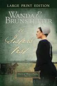 A Sisters Test (Large Print) (#02 in Sisters Of Holmes County Series)