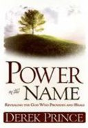 Power in the Name Paperback