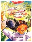 The Amazing Journey Paperback