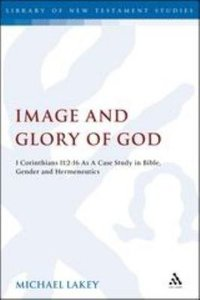 Image and Glory of God (Library Of New Testament Studies Series)