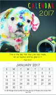 2017 Mini Magnetic Calendar: This Is the Day That the Lord Has Made (Psalm 118:24)