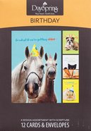 Boxed Cards Birthday: Humor Pets