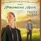 The Promise Box (Seven Brides For Seven Bachelors Series) eAudio