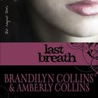 Last Breath (Rayne Tour Series) eAudio