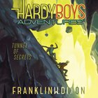 Tunnel of Secrets (#10 in Hardy Boys Adventures Audio Series) eAudio