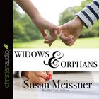 Widows & Orphans (Unabridged, 7 CDS) (#01 in Rachael Flynn Audio Series)