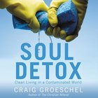 Soul Detox eAudio
