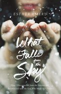 What Falls From the Sky eBook