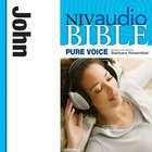 NIV, Audio Bible, Pure Voice: John, Audio eAudio