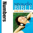 NIV, Audio Bible, Pure Voice: Numbers, Audio eAudio