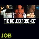 Inspired By?The Bible Experience: Job, Audio eAudio
