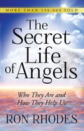 The Secret Life of Angels eBook