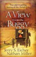 A View From the Buggy eBook