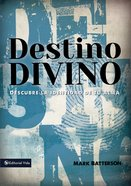 Destino Divino eBook