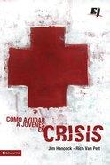 Cmo Ayudar a Jvenes En Crisis eBook