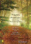 Oraciones Y Promesas (Spanish) (Spa) (Prayers And Promises)
