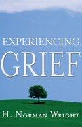 Experiencing Grief eBook
