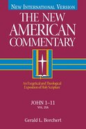 John 1-11 (#25A in New American Commentary Series) eBook