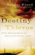 Destiny Thieves eBook