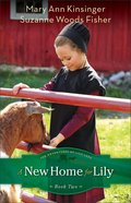 A New Home For Lily (#02 in The Adventures Of Lily Lapp Series) eBook