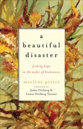 A Beautiful Disaster eBook