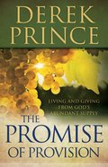 The Promise of Provision eBook