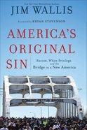 America's Original Sin eBook