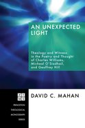 An Unexpected Light Paperback