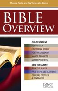 Bible Overview: Know Themes, Facts and Key Verses At a Glance (Rose Guide Series) eBook