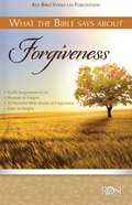 What the Bible Says About Forgiveness (Rose Guide Series) eBook