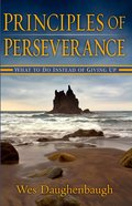 Principles of Perseverance eBook