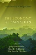 The Economy of Salvation eBook