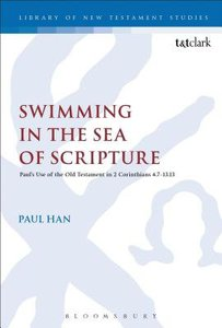 Swimming in the Sea of Scripture (Library Of New Testament Studies Series)