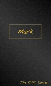 Journible 17: 18  Mark (The 17 18 Series)