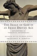The Image of God in An Image Driven Age Paperback